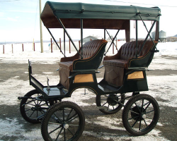 Robert Carriages 2 Seat Surrey with Top