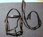 Draft Horse Australian halter bridle combination