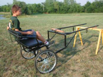 Pony - Mini size easy entry driving cart