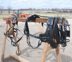Horse size Sport Harness with Euro Brollar Collar
